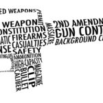 The Cybersecurity of Gun Control