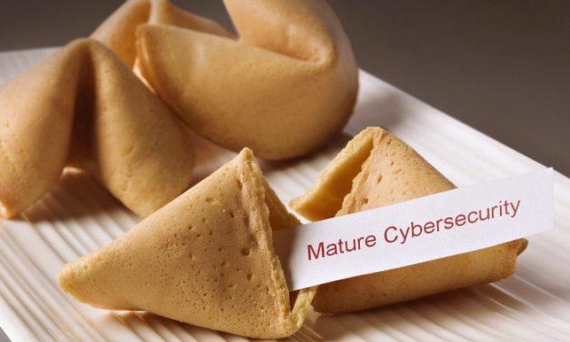 Passionate Cyber Organizations